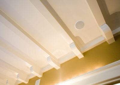Nearly Invisible Ceiling Speaker